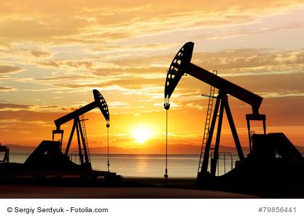 Pumpen fpür die Erdölförderung